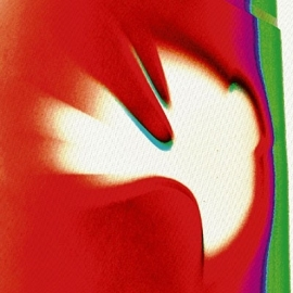 Linkin Park - A Thousand Suns (1CD+1DVD)