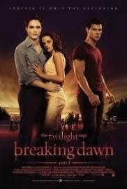 Movie - Twilight Saga, The: Breaking Dawn - Part 1 (1DVD)