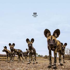 Balthazar - Fever (1CD)