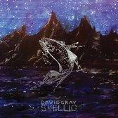 David Gray - Skellig (1CD)