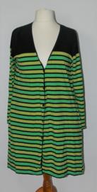 Hebbeding groen/zwart vest-3