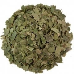 Berkenblad ( Betula pendula ) 1kg