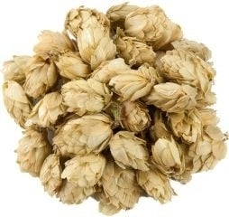 Hopbellen ( Humulus lupulus ) 500 gram