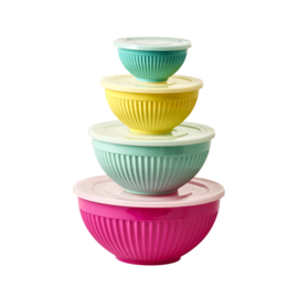 Rice Melamine Bowls Set of 4 with Plastic Lid 'Today is Fun'Mix