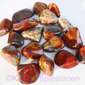 Jaspis: Poppy jaspis A kwaliteit  TS (XL) mét Ogen  per st.