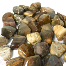 Versteend hout trommelsteen (XL) per st.*