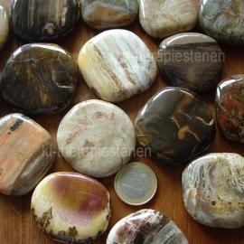 Versteend hout, platte edelsteen per st.**