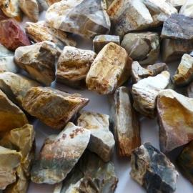 Versteend hout Waterstenen 100/200 gr. voor watervitalisatie