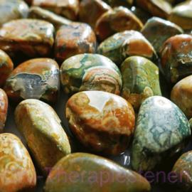 Jaspis: Regenwoud jaspis, Rhyoliet,   trommelsteen (M) p.st.*