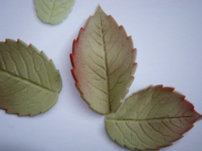 Rozenblaadje / Rose leaf Plunger Medium PME