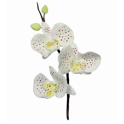 Orchide cutter set van 3