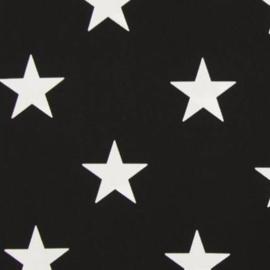 Vlag, zwart met witte ster, groot