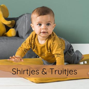 KLEDING shirtjes en truitjes