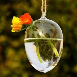 Glas-Vase in der Form eines Eies