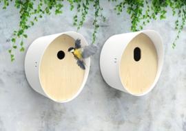 Vogelhuis rond hout wit
