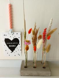 Plantenstekset beton en glas met droogbloemen & kaart