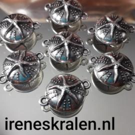 BD 0102: DQ Ornament met Zeester op Zee-egel, ca 24x18mm