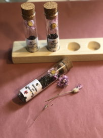 Glazen buisje met bloem zaadjes