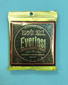 Ernie Ball Everlast medium 13-56