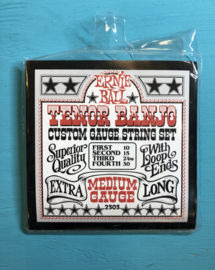 Ernie Ball Medium Gauge 10-30 tenor banjo 4string