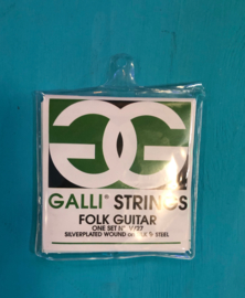 Galli Strings Folk Guitar