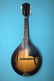 Gretsch G9320 New Yorker Mandoline