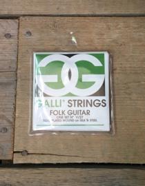 Galli Strings Folk Guitar