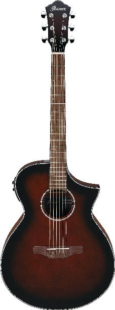 Ibanez acoustic electric