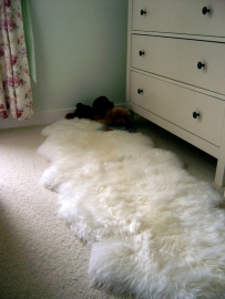 Sheepskin Double Extra Large