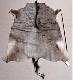 Gnoehuid (2)