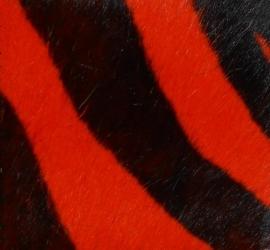 Imitatie zebrahuid oranje