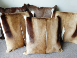 Springbok and Blesbok Cushions