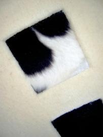Look Squares White