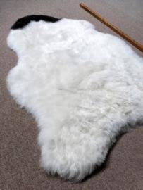 Spotted Shorn Sheepskin S (1218)