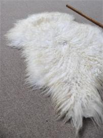 Witte Gekrulde Ijslandse Schapenvacht S (4390)