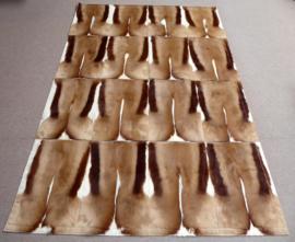 Springbok Patchwork Tapijt, 160 x 240 cm