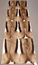 Springbok Patchwork Tapijt, 80 x 240 cm