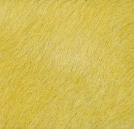 Citroengele Koeienhuid