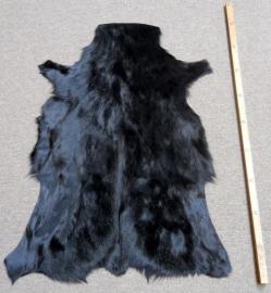 Springbokhuid Zwart