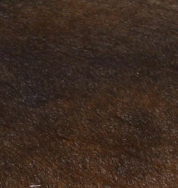 Brown Cowhides
