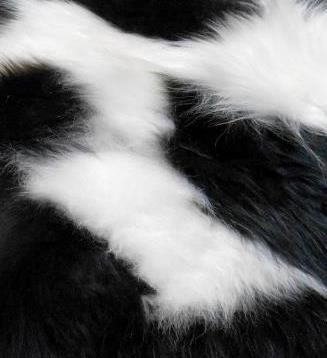 Natuurlijk Wit-Zwart