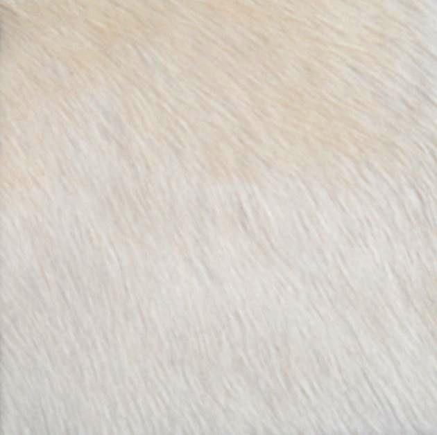 Natuurlijk witte Koeienhuid