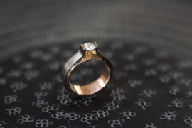 Titanium solitair ring met Diamant