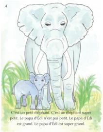 Beginners | Édi l'éléphant - Emily Ibrahim