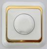 Dimmer 1000Watt   / inbouw  Wit/Goud