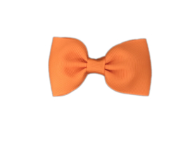 Haarstrik Oranje - 6,5 cm - Kids-Ware