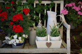 Brocant kistje met twee bloempotjes