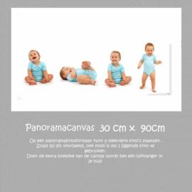 Panorama Canvas 30 cm x 90 cm