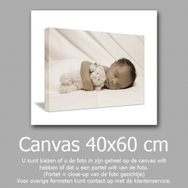 AANBIEDING Canvas 40 x 60 cm+canvas 50 bij 50