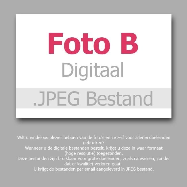 Foto B - Digitaal